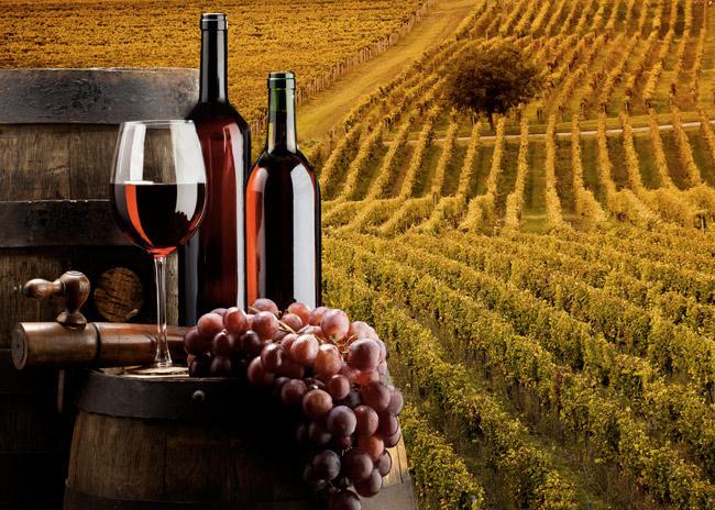 http://www.ilgiuncheto.it/wp-content/uploads/2016/02/tour-vino-degustazioni-sommelier-toscana.jpg